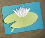 Pop-Up Water Lily