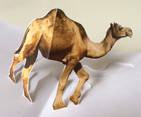 Hump Day Toys : Camel
