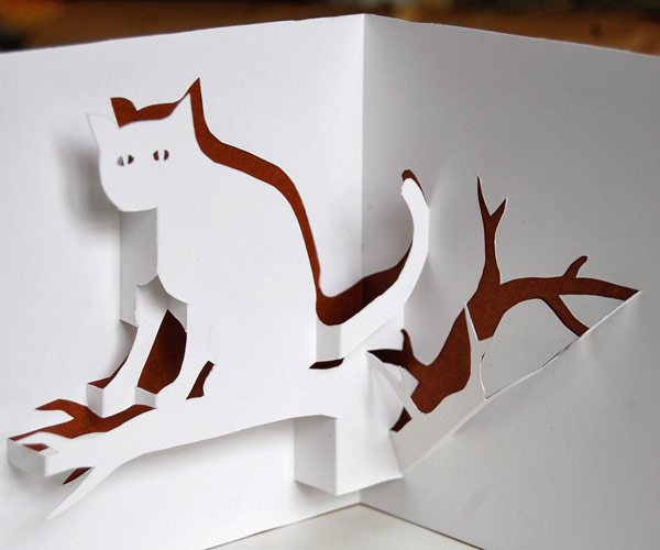 cat pop-up
