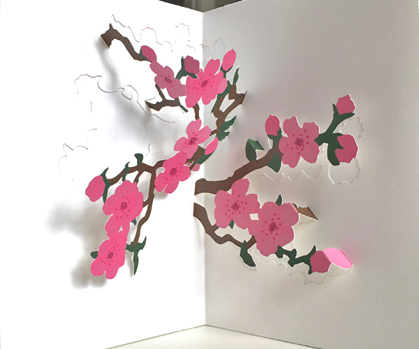 cherry blossoms pop-up card