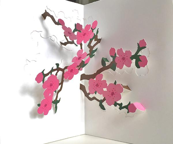 cherry blossoms diy pop